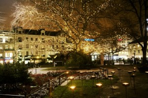 miriam_preis-christmas_lights-358
