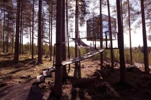 tree6_treehotel.se