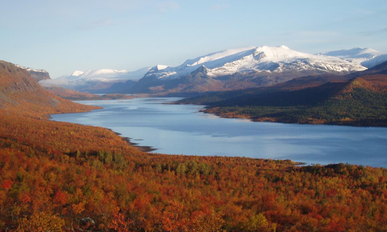 「スウェーデンの秋の景色」の画像検索結果