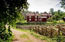 tony_toreklint-red_cottages-694