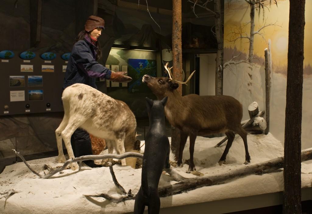 サーミ博物館